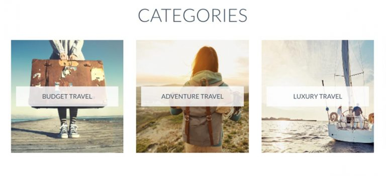 Travel-Wise Unveils New Website and Mascot